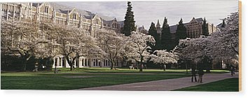 University Of Washington Wood Prints