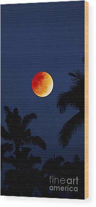 Nightcap Wood Prints