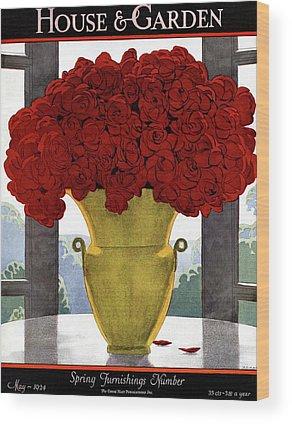 Red Rose Drawings Wood Prints