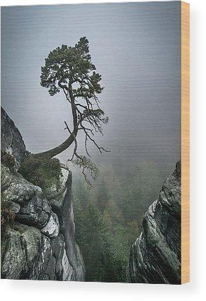 Struggle Wood Prints
