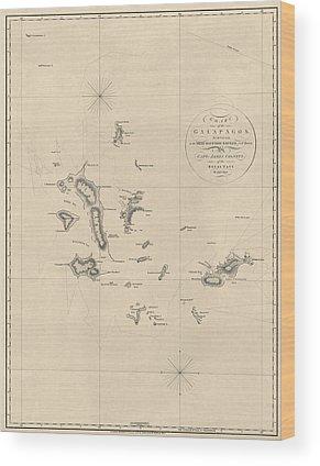 Galapagos Islands Wood Prints