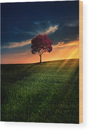 Sunset Wood Prints