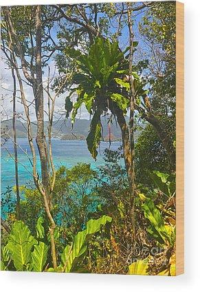 Trinidad And Tobago Wood Prints