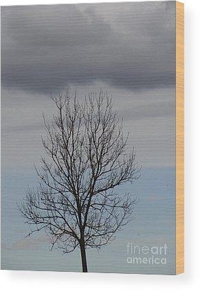Karinravasio Wood Prints