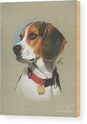 Beagle Wood Prints