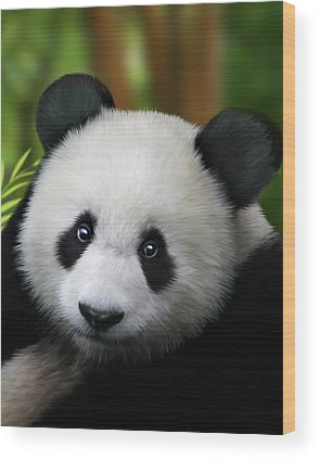Panda Wood Prints