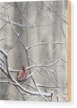 Crossbill Wood Prints