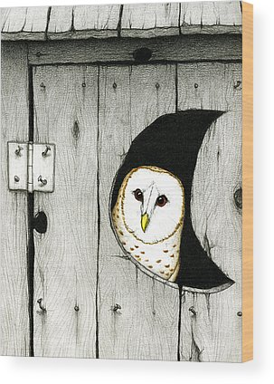 Owl Wood Prints