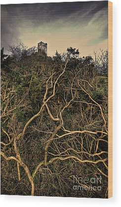 Fortification Wood Prints