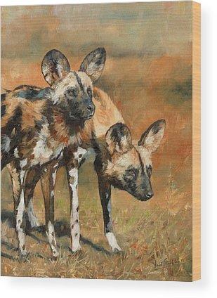 Wild Dogs Wood Prints