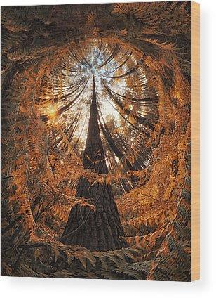 Ferns Wood Prints
