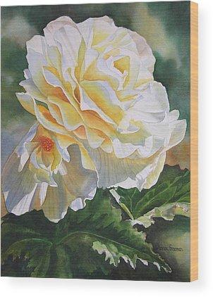 Begonias Wood Prints