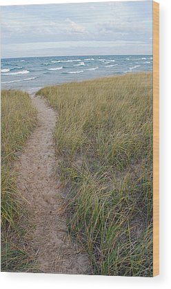 Lake Michigan Wood Prints