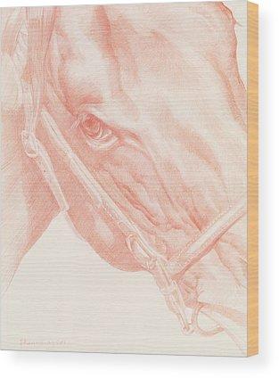 Horse Eye Drawings Wood Prints