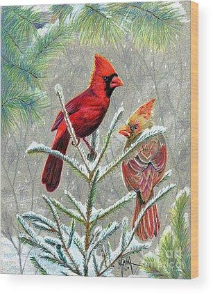 Female Cardinal Drawings Wood Prints