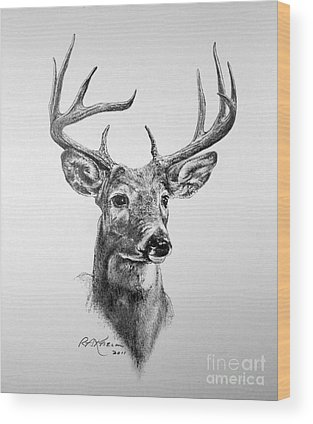 White-tailed Buck Wood Prints