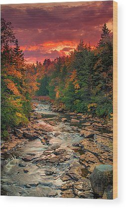 Blackwater Wood Prints