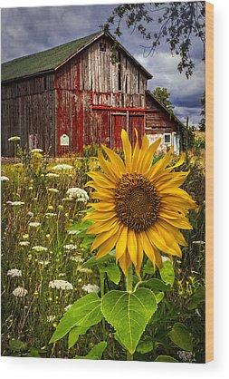 Pasture Wood Prints