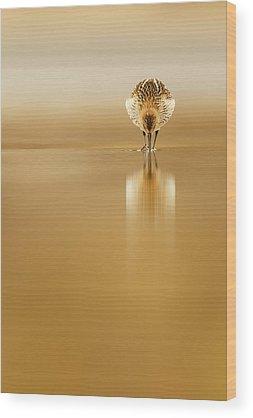 Mirrored Wood Prints