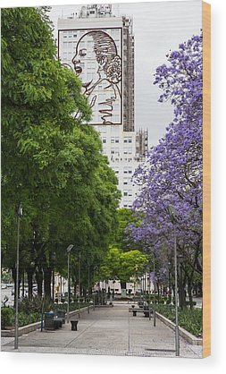 Evita Photographs Wood Prints