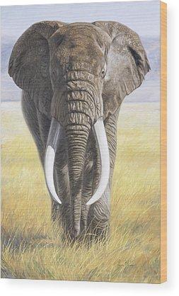 Conservation Wood Prints