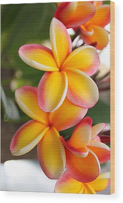 Hawaiian Flower Wood Prints