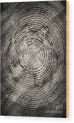 Passage Of Time Wood Prints
