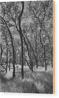 Mt. Diablo Wood Prints