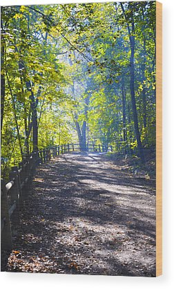 Wissahickon Wood Prints