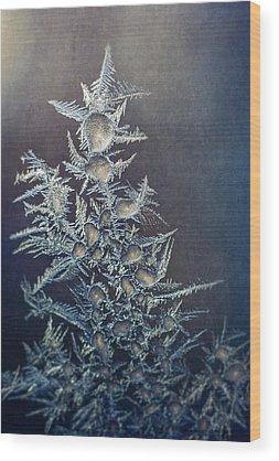 Frozen Wood Prints