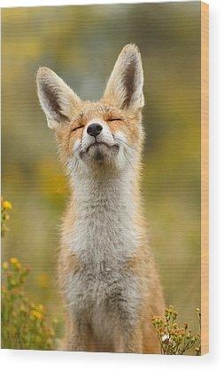 Fox Wood Prints