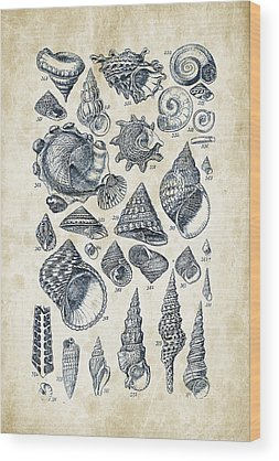 Freshwater Mussel Wood Prints