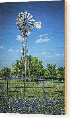 Texas Bluebonnet Wood Prints