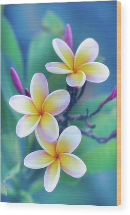 Blue Hawaii Wood Prints