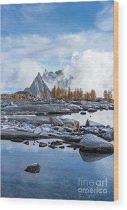 Larch Wood Prints