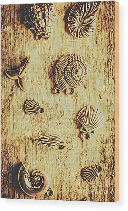 Oyster Shell Wood Prints