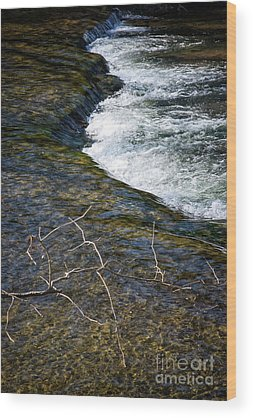 Edwin Warner Park Wood Prints
