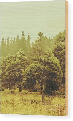 Farmyards Wood Prints