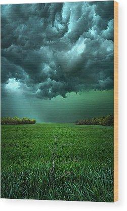Meadow Wood Prints