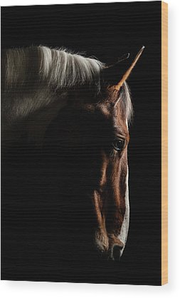 Racehorse Wood Prints