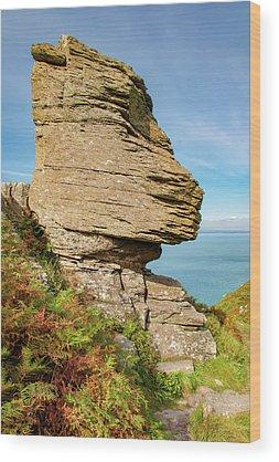North Devon Wood Prints