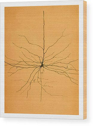 Nerve Cell Wood Prints