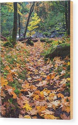 Path Wood Prints
