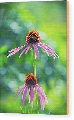 Flower Wood Prints
