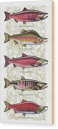Fishing Tackle Wood Prints