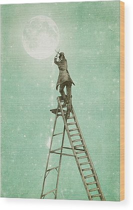 Ladders Wood Prints