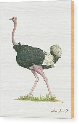 Ostrich Wood Prints
