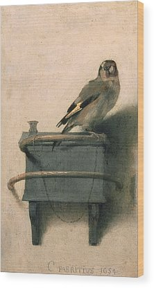 Goldfinch Wood Prints
