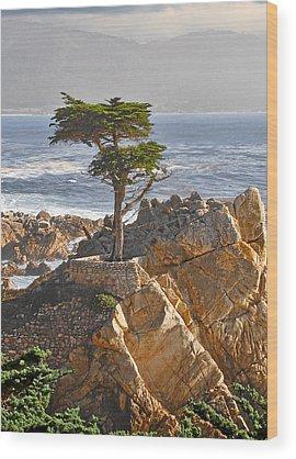 Pine Wood Prints