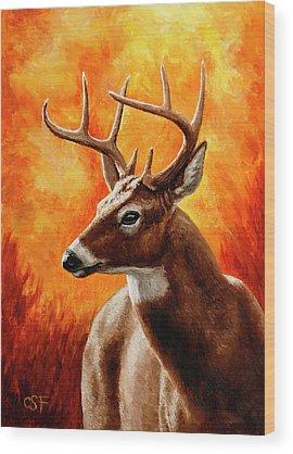 Trophy Buck Wood Prints